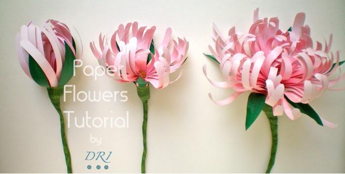 цветы из бумаги мастер-класс (2) (700x353, 74Kb)