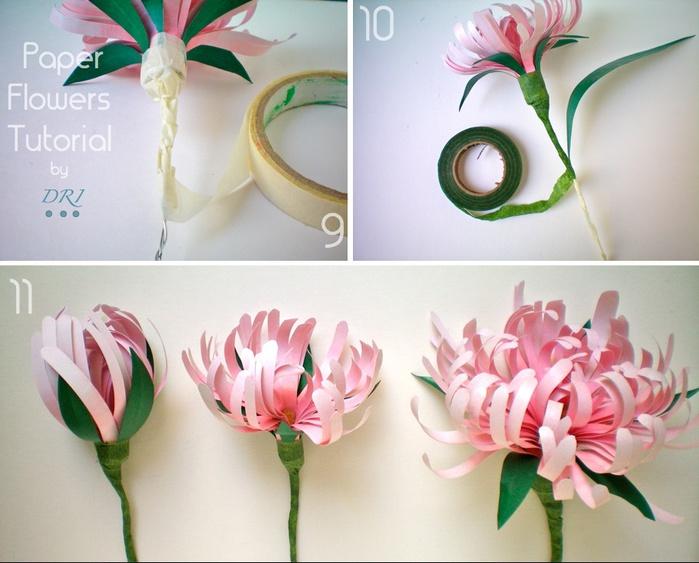 цветы из бумаги мастер-класс (5) (700x563, 120Kb)