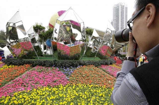 фестиваль цветов в гонгконге 2013 2 (640x424, 292Kb)