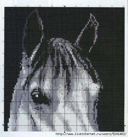 getImageсмпртоь (446x480, 195Kb)