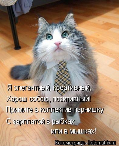 kotomatritsa_iVTw (392x480, 39Kb)