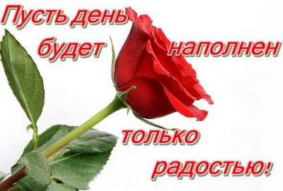 164464_408363805923828_329826696_n (400x271, 26Kb)