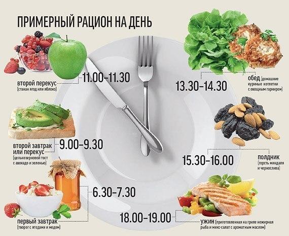 рацион питания на день (570x465, 69Kb)