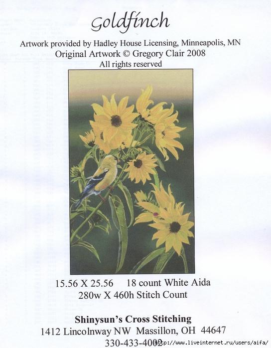 1-Goldfinchjaifa (1) (544x700, 284Kb)