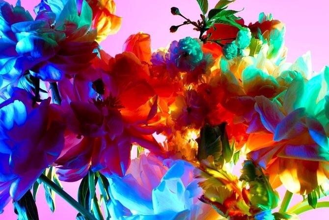 электрический цветок (670x449, 209Kb)