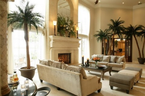 decoracion-de-salones-con-plantas-de-interior-02-480x319 (480x319, 46Kb)