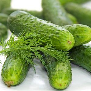 cucumb (300x300, 19Kb)