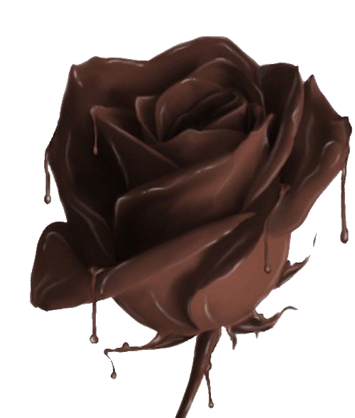 1313672970_chocolate_rose.86193223 (500x589, 264Kb)