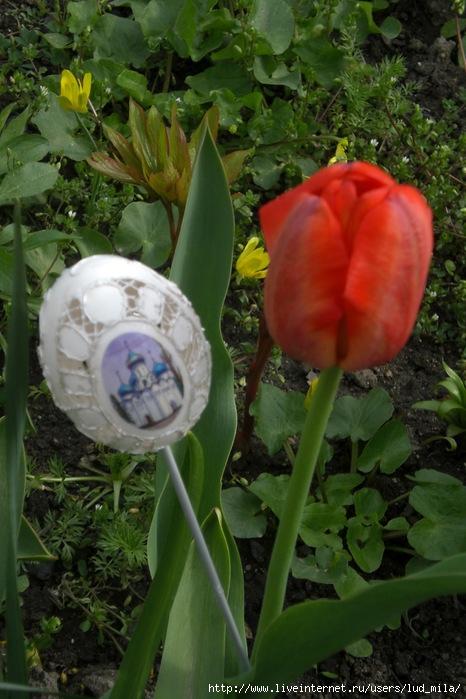 яйца ришелье 007 (466x700, 224Kb)