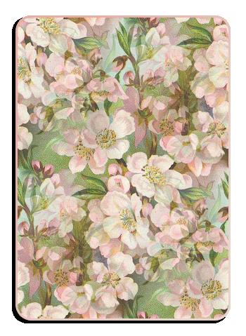 Flowers-обр (350x479, 349Kb)