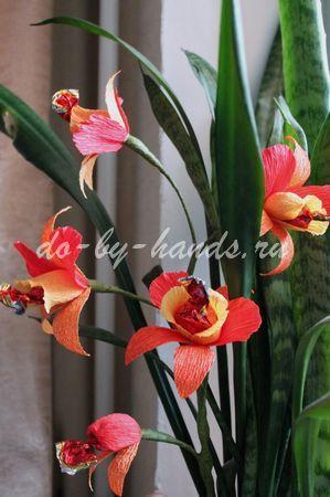 орхидеи из конфет и гофробумаги (19) (299x450, 43Kb)