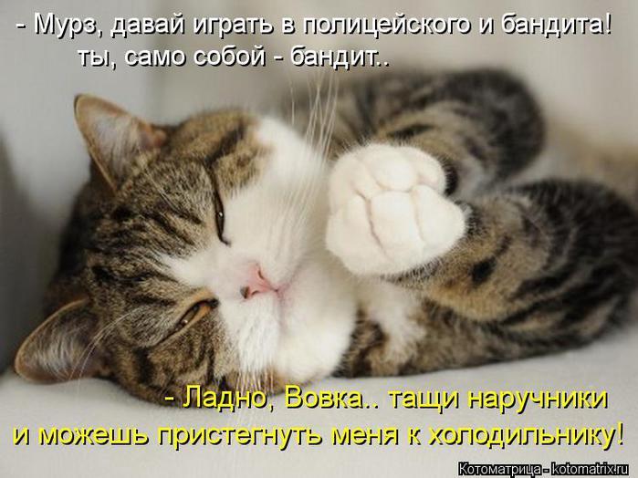 kotomatritsa_M (700x524, 57Kb)