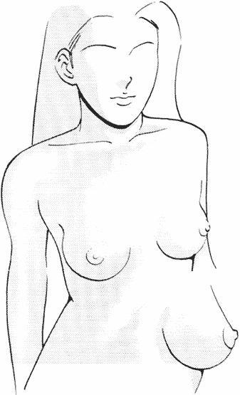 Каждый уважающий себя художник должен уметь рисовать женскую грудь.