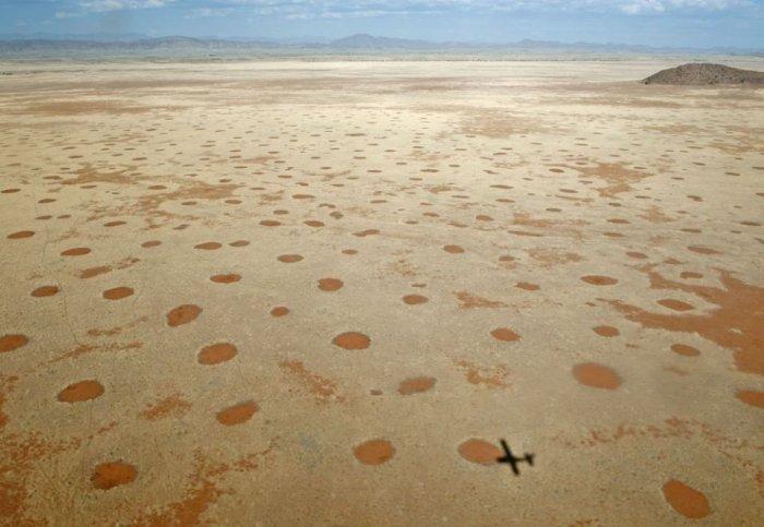 круги в пустыне намиб 1 (700x483, 58Kb)