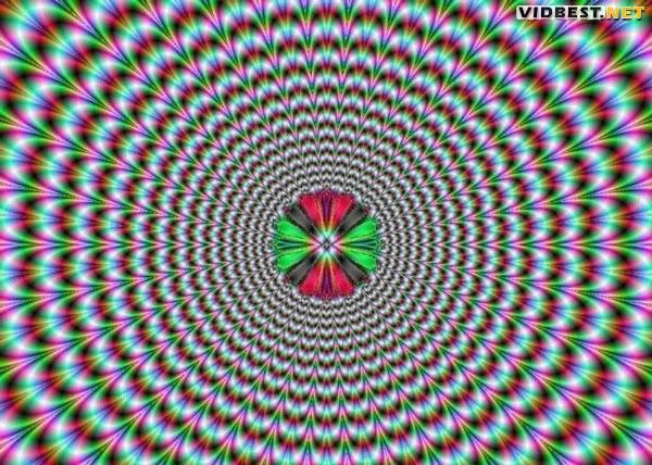 vidbest.net_opt_fokus_060 (600x428, 75Kb)