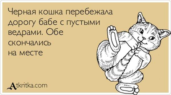 2354811_chernaya_koshka (600x335, 34Kb)