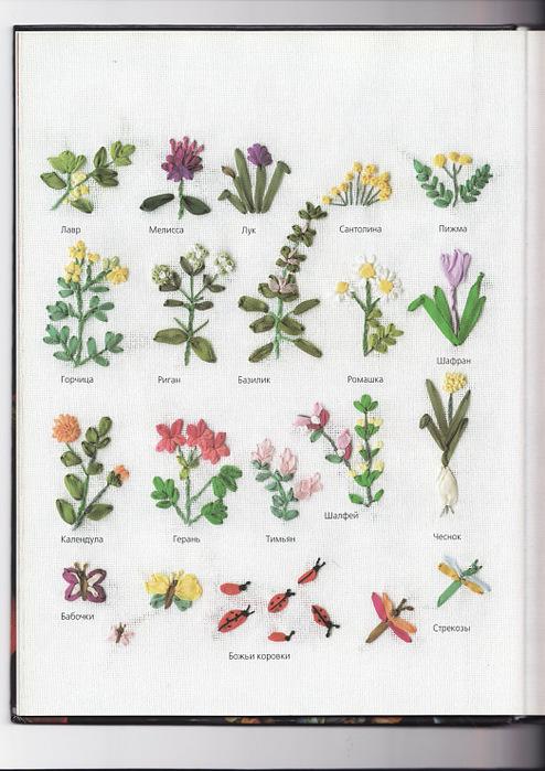 Энциклопедия полевых цветов с картинками 2