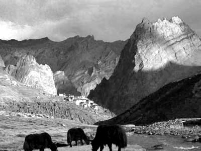 Индия, долина Ладакх (400x300, 64Kb)