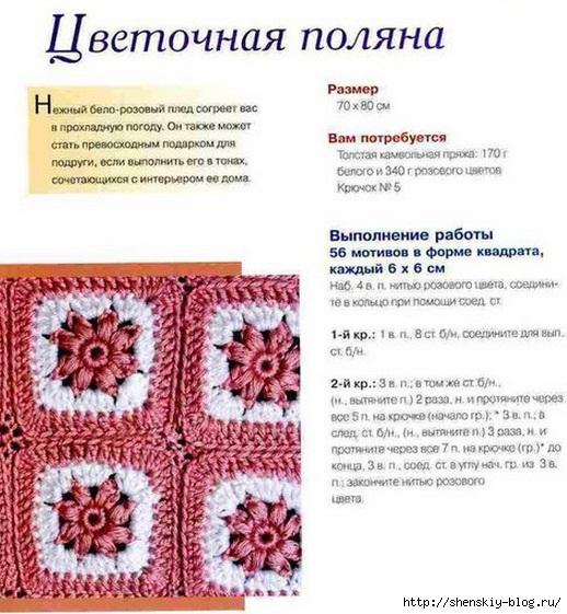 4121583_pledpolana1 (518x561, 197Kb)