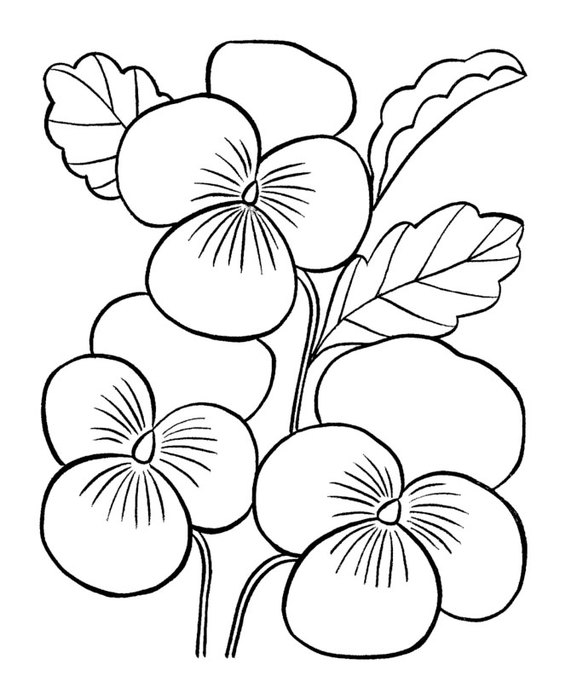 flowers-1 (571x700, 63Kb)
