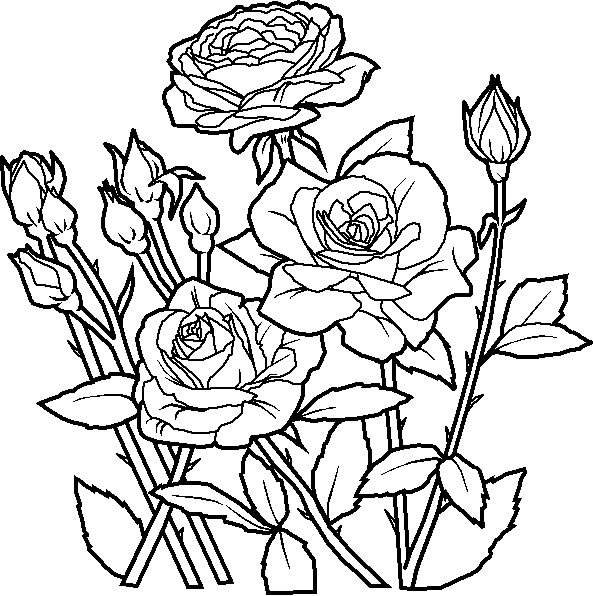 flowers-8 (593x596, 108Kb)