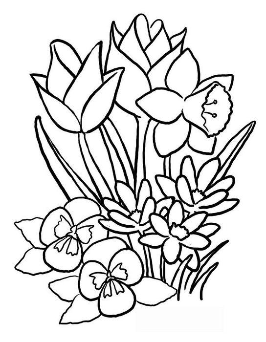 flowers-11 (544x700, 71Kb)