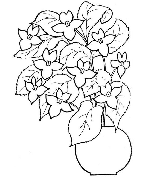flowers-16 (572x700, 65Kb)