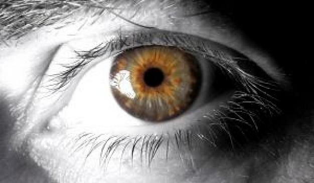4080226_eyemax1_2961824 (626x365, 54Kb)