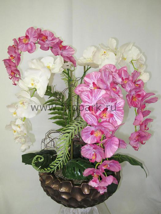 Композиции из орхидей в горшках фото своими руками