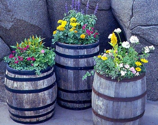 ...патио в небольшой сад или украсить балкой растениями с красивыми нежно пахнущими цветками и яркими.