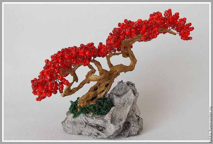 2065060522-tsvety-floristika-mini-bonsaj-n6153 (700x473, 69Kb)