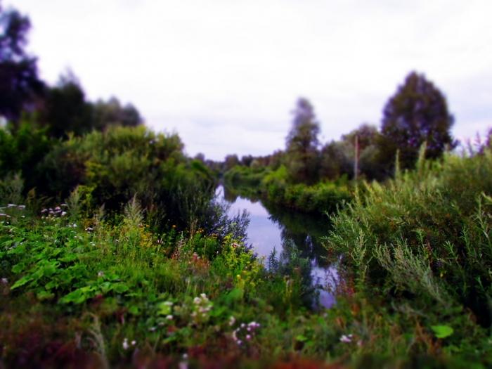 фото, пейзаж, река, у реки, миниатюра, эффект миниатюры в фотографиях, природа, Сузун/4203019_IMG_1860 (700x525, 235Kb)