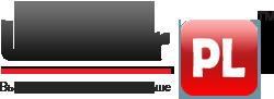 4208855_logo_ru (250x91, 8Kb)