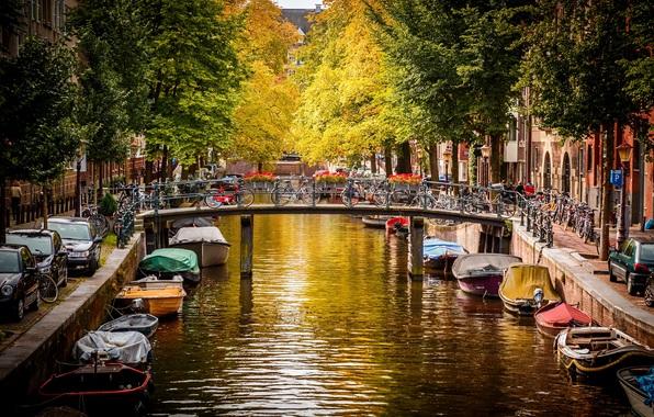 амстердам (596x380, 404Kb)