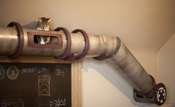 кошки интерьер креатив