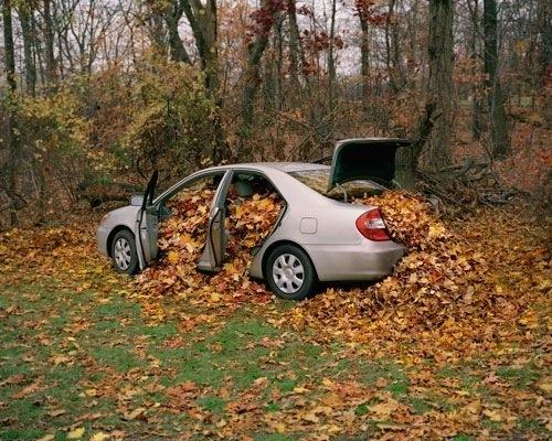 машины и осень1а (500x400, 191Kb)