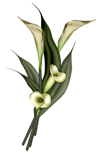 Serenity_Flowers1_Scrap and Tubes (357x549, 124Kb)
