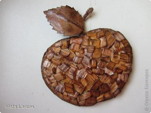 Сувениры - магнитики ЯБЛОЧКИ из картона и прищепок (10) (520x390, 90Kb)