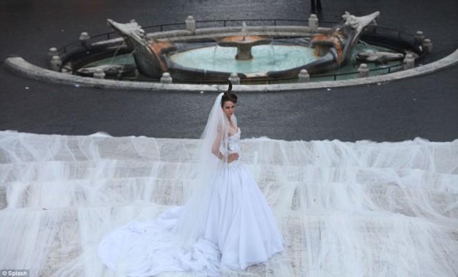 фата невесты фото (660x399, 152Kb)