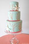 ������ coral_aqua_beach_cake (466x700, 168Kb)