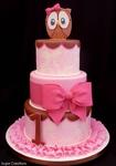 Превью pink_owl_cake-1 (490x700, 178Kb)