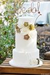 Превью succulents_cake_1 (466x700, 247Kb)