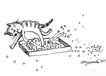 Наполнитель для кошачьего туалета/4574032_lotok (446x320, 39Kb)