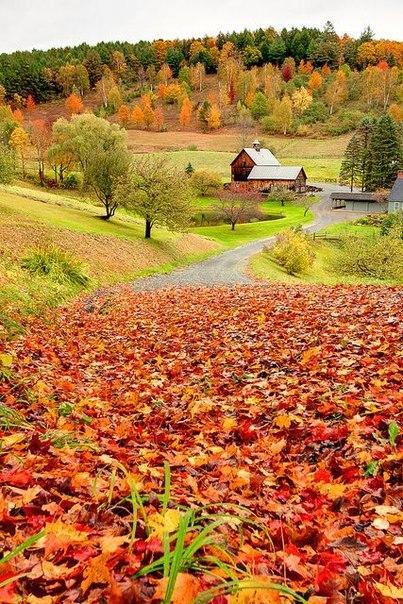 сентябрь осень пришла (403x604, 467Kb)