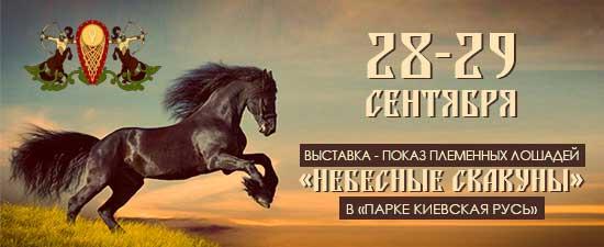 28-29-09-2013KoniRus (550x225, 111Kb)