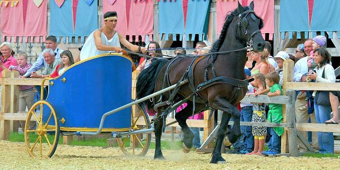 Horsepkr020 (700x350, 360Kb)