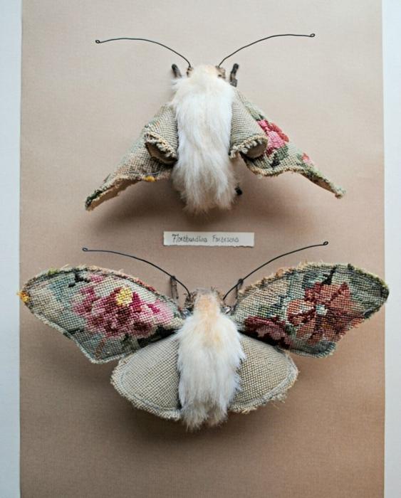 Коллекцию бабочек и моли сшить не хотите А мистер Финч шьет) (15) (563x700, 254Kb)