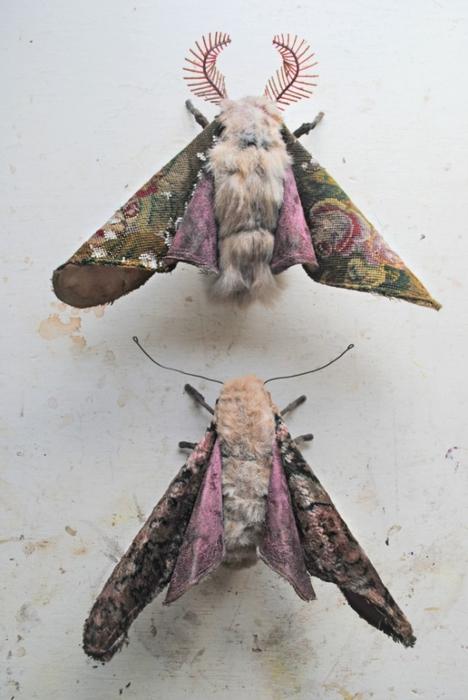 Коллекцию бабочек и моли сшить не хотите А мистер Финч шьет) (17) (468x700, 202Kb)
