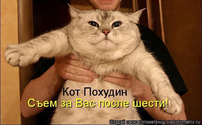 kotomatritsa_0q (700x435, 129Kb)