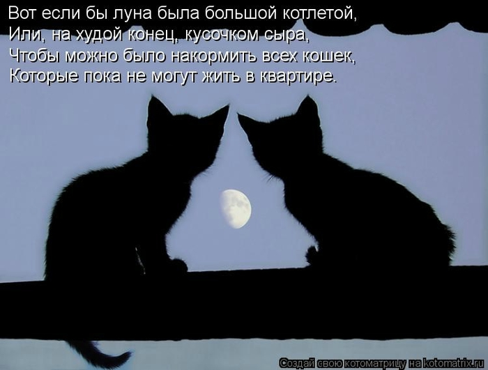 kotomatritsa_2j (700x531, 138Kb)